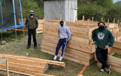 Green Thumbs and Good Vibes Garden Box Project update from Tanis Dawson, Garden Box Project Manager